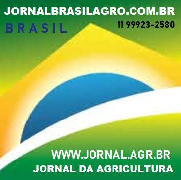 JORNALBRASILAGRO.COM.BR 11 99923-2580 SP.jpg