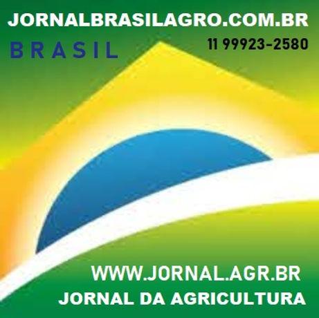 JORNALBRASILAGRO.COM.BR 11 99923-2580 SP