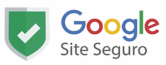 google_site_seguro_large.webp