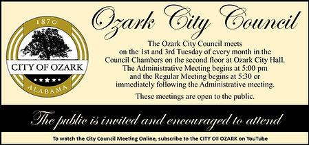 City Council Times New.jpg