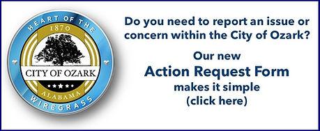 action request .jpg