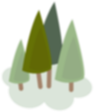 20191209-Tree-kindnessfoundation-13.png