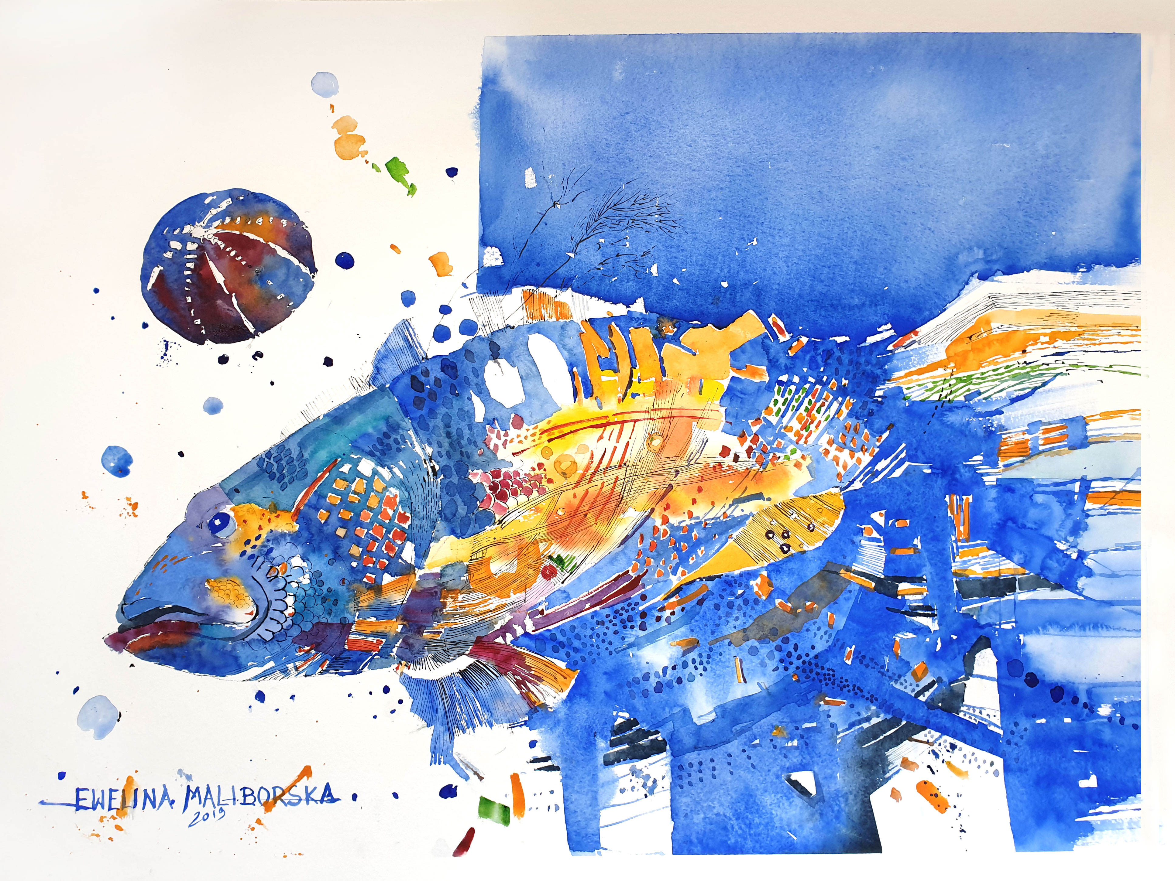Bul fish,