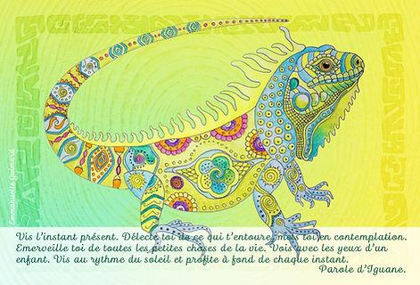 carte_iguane.jpg