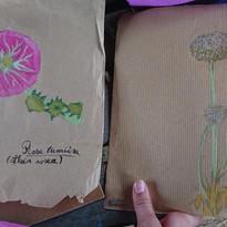 Dessins sur papier craft