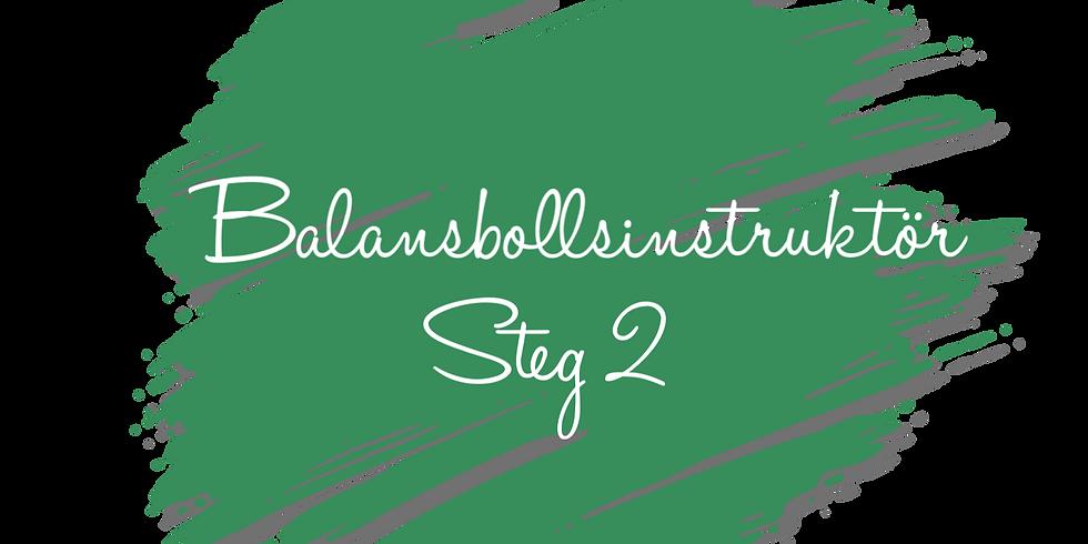 Balansbollsinstruktör steg 2 - Åre (1)