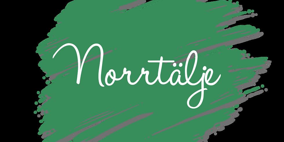 Diplomerad Balansbollsinstruktör - Norrtälje