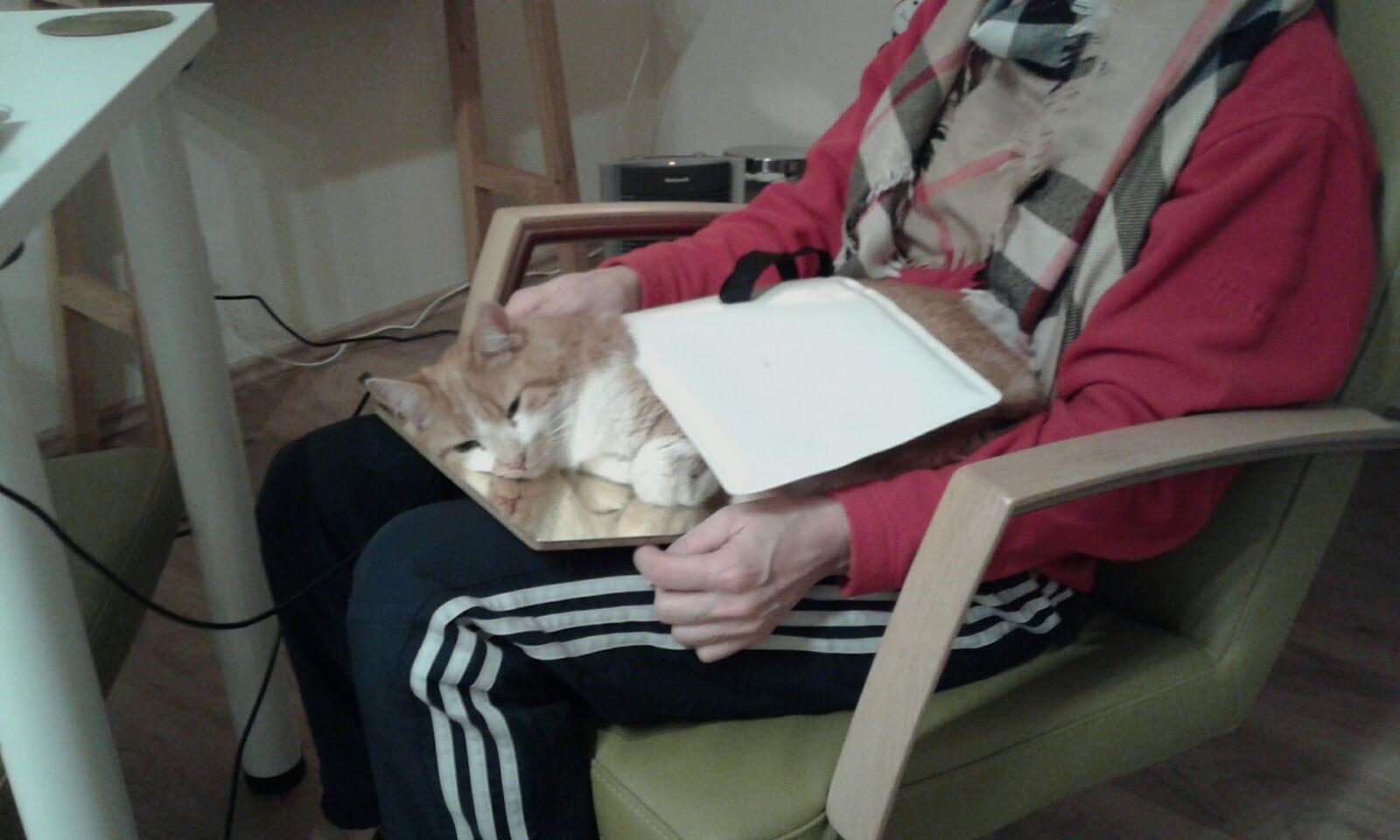Katze2 auf Platte
