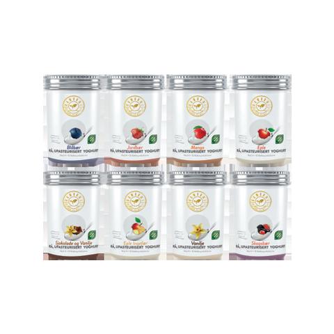 Flavored Yoghurt