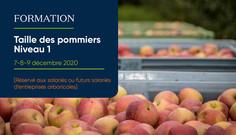 FORMATION COURTE : Taille des pommiers (niv.1)