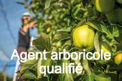 FORMATION EN ALTERNANCE : démarrage du parcours d'Agent arboricole qualifié.