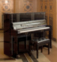 FEURICH PIANO naujas pianinas.jpg