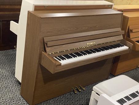 riesutmedzio spalvos pianinas fazer.HEIC