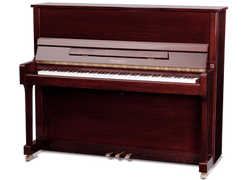 FEURICH 122 Universal bordeaux polished