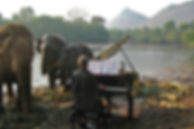 FEURICH Elephants grand piano feurich fo