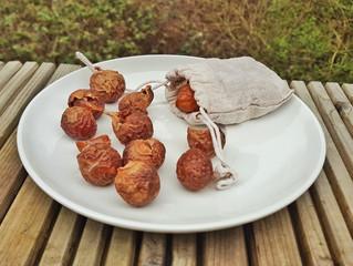 Organic Soapnuts - review
