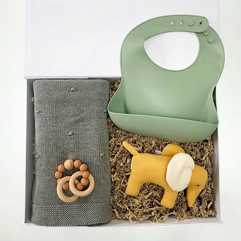 Newborn Baby Shower gift box with a organic cotton baby blanket, a silicone bib free BPA, elephant soft toy for babies rattle