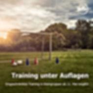 Training Unter Auflagen.jpg