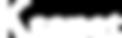 logo ksanet blanco.png