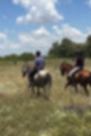 Balade a cheval a donana, chevaux andalous, Huelva