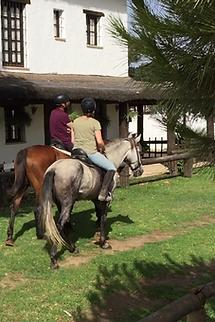 monter a cheval dans el rocio, chevaux espagnols PRE, Huelva