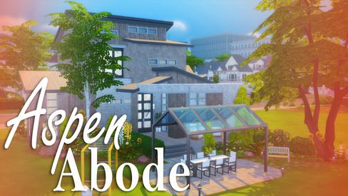 House | Aspen Abode