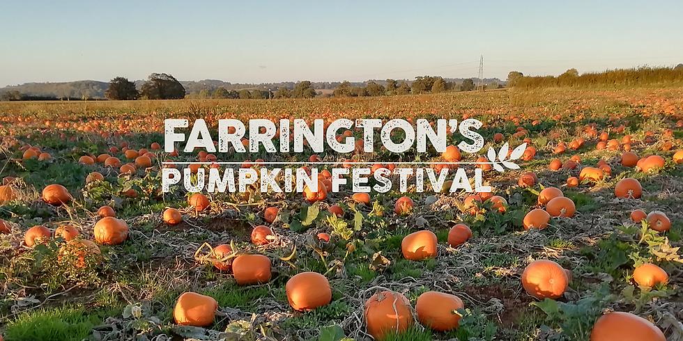 Pumpkin Picking at Farrington Farm
