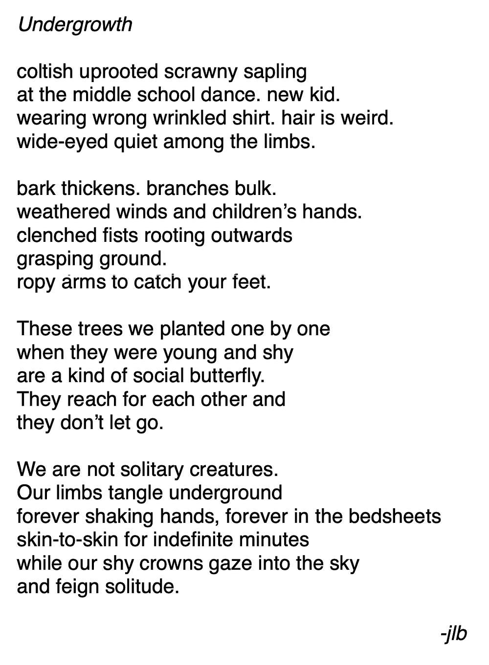 Undergrowth //  coltish uprooted scrawny sapling /at the middle school dance. new kid./ wearing wrong wrinkled shirt. hair is weird. /wide-eyed quiet among the limbs. / bark thickens. branches bulk./ weathered winds and children's hands. /clenched fists rooting outwards /grasping ground. /ropy arms to catch your feet./  These trees we planted one by one /when they were young and shy/ are a kind of social butterfly./ They reach for each other and /they don't let go./  We are not solitary creatures./ Our limbs tangle underground /forever shaking hands, /forever in the bedsheets /skin-to-skin for indefinite minutes/ while our shy crowns gaze into the sky/ and feign solitude.