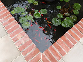 POND FINISHED  03.jpg