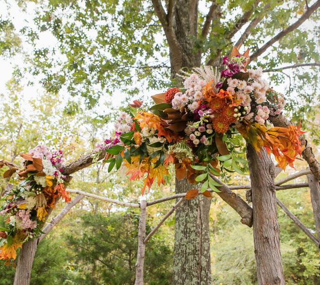 Woodland Autumn Arbor