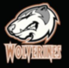 wolverines-black.png