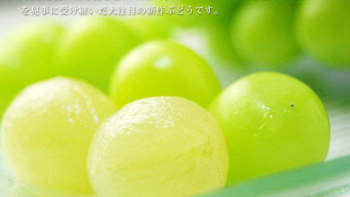 シャインマスカット(旬の果物)