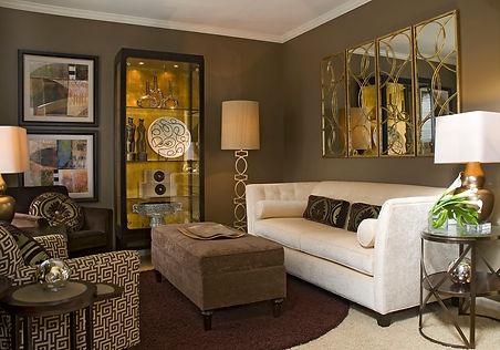 Brown wall living room (4).jpg