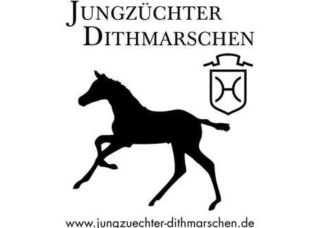 """Offener Fachvortrag """"Fundamentsfehler bei Aufzuchtspferden erkennen und behandeln"""""""