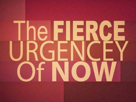 The fierce urgency of now - Jeni Watts