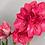 "Thumbnail: Bolero Amaryllis 6"" Planter"