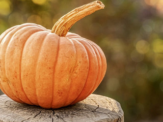Tips For A Safe Halloween In Aiken