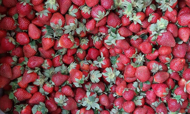 fraises-fraiches.jpg