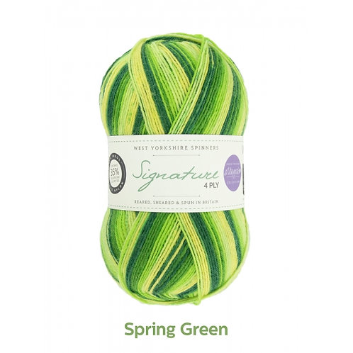 WYS 4 Ply襪線_Spring Green 882