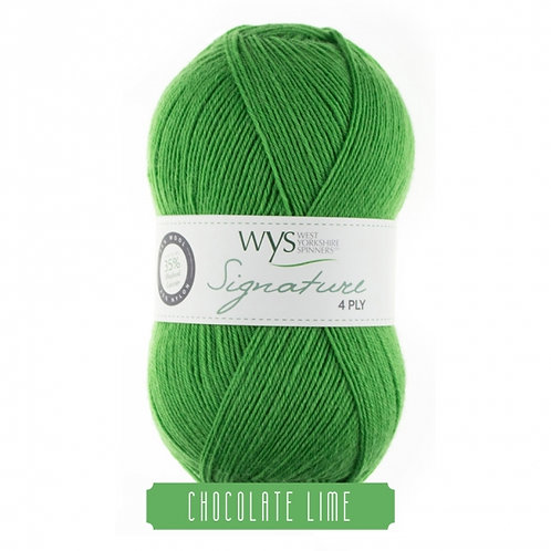 WYS 4 Ply襪線_Chocolate Lime 395