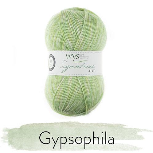 WYS 4 Ply襪線_Gypsophila