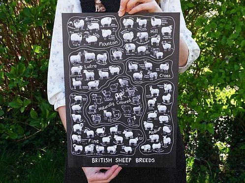 British Sheep Breeds_A3 Poster Black(A3海報_黑)