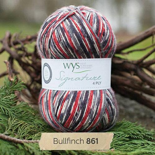 WYS 4 Ply襪線_Bullfinch 861