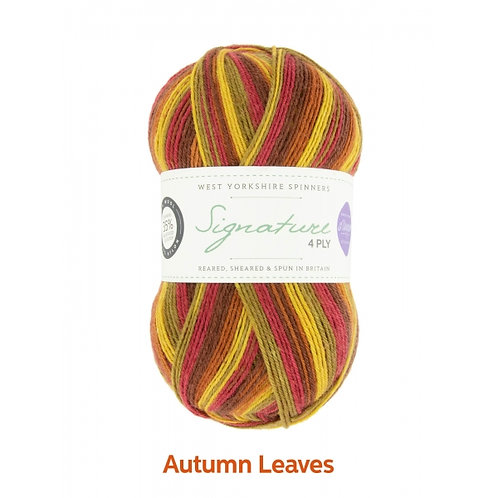 WYS 4 Ply襪線_Autumn Leaves 885