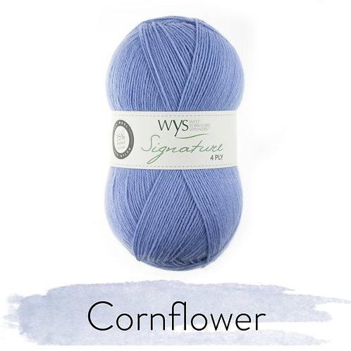 WYS 4 Ply襪線_Cornflower 325