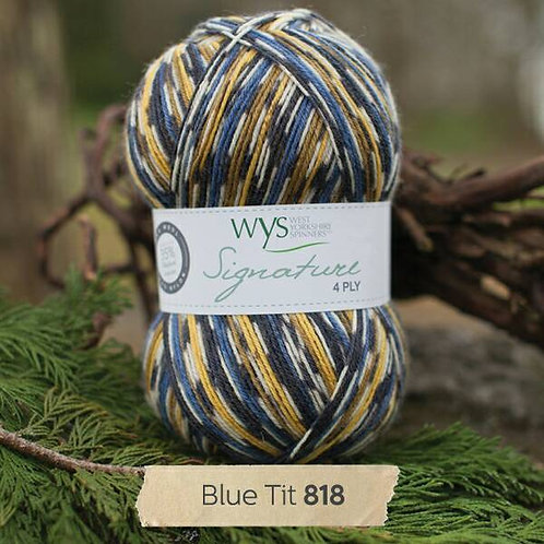 英國WYS 4 Ply - Country Birds_Blue Tit 藍雀818