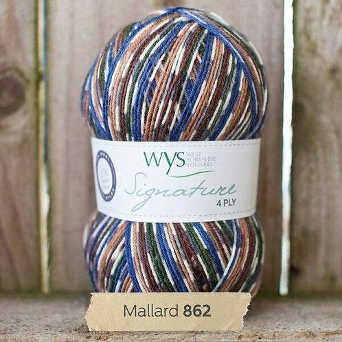 WYS 4 Ply襪線_Mallard 862
