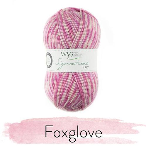 WYS 4 Ply襪線_Foxglove 802