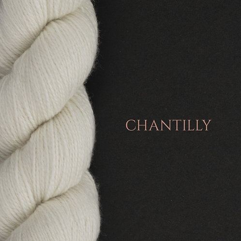 WYS Exquisite 4ply_Chantilly 010