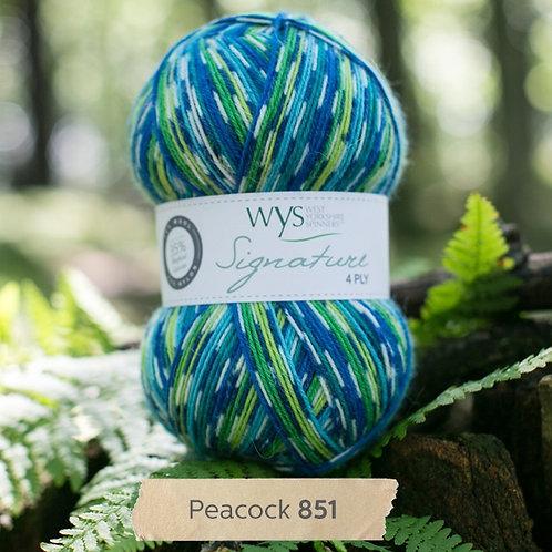 WYS 4 Ply襪線_Peacock 851